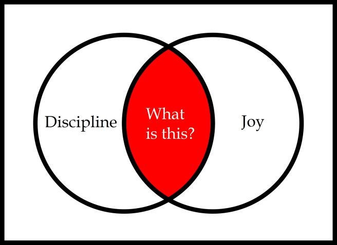 discipline joy